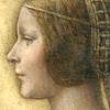 La Bella Principessa: рисунок, приписываемый Леонардо, продолжает хранить свои тайны